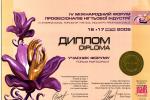 Диплом участника выставки IV юбилейного международного форума профессионалов ногтевой индустрии 2005